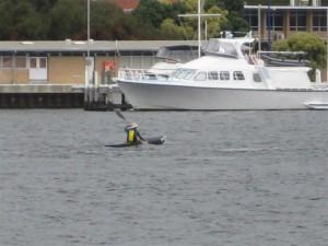 From the Minim Cove Shoreline--Kayaking!  Something else to explore here in Australia